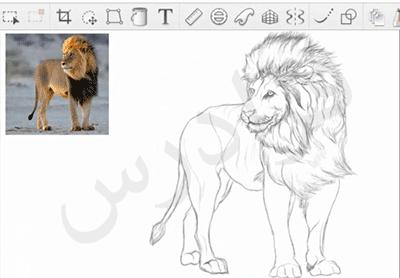 آموزش نرم افزار SketchBook Pro (اسکچ بوک) برای طراحی آناتومی حیوانات